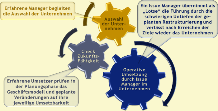 Professionelle Umsetzung durch Issue Manager
